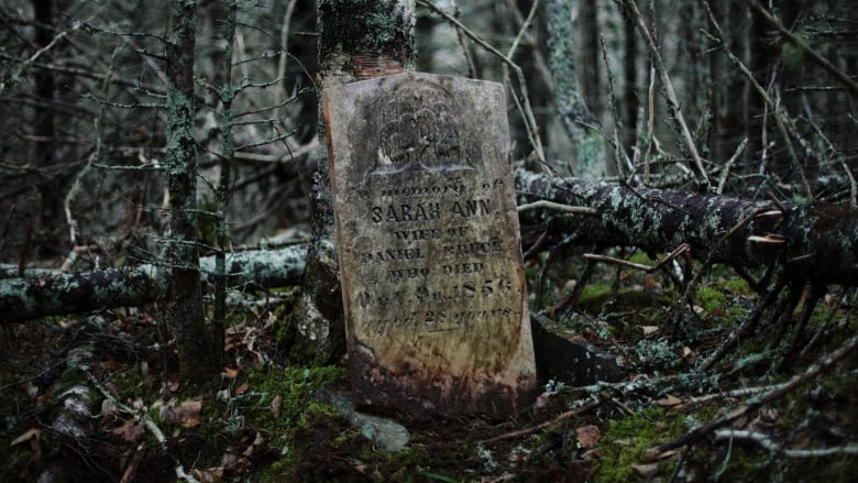 https://www.cbc.ca/news/canada/nova-scotia/photographer-quest-abandoned-cemeteries-1.5866319
